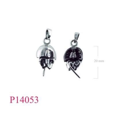 P14053