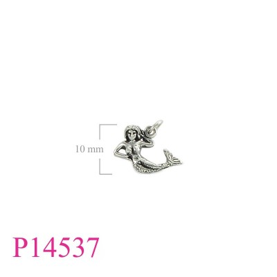 P14537