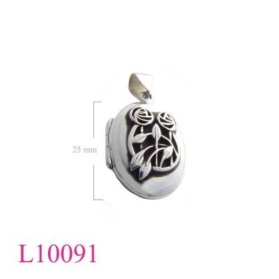L10091