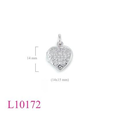 L10172
