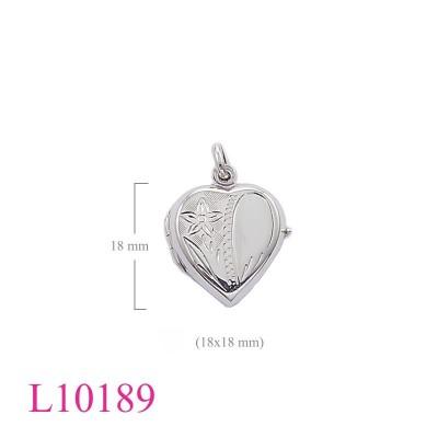 L10189