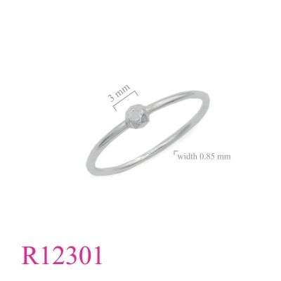 R12301