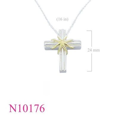 N10176