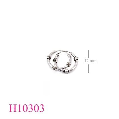 H10303