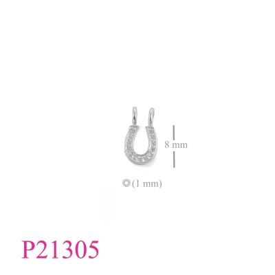 P21305