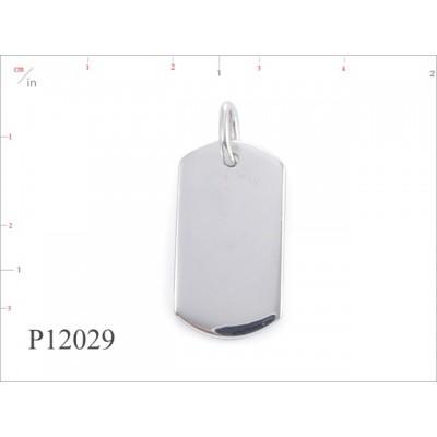 P12029