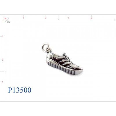 P13500